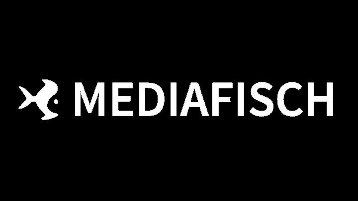logoMediafisch