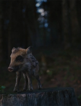 Coop Naturaplan – Franky